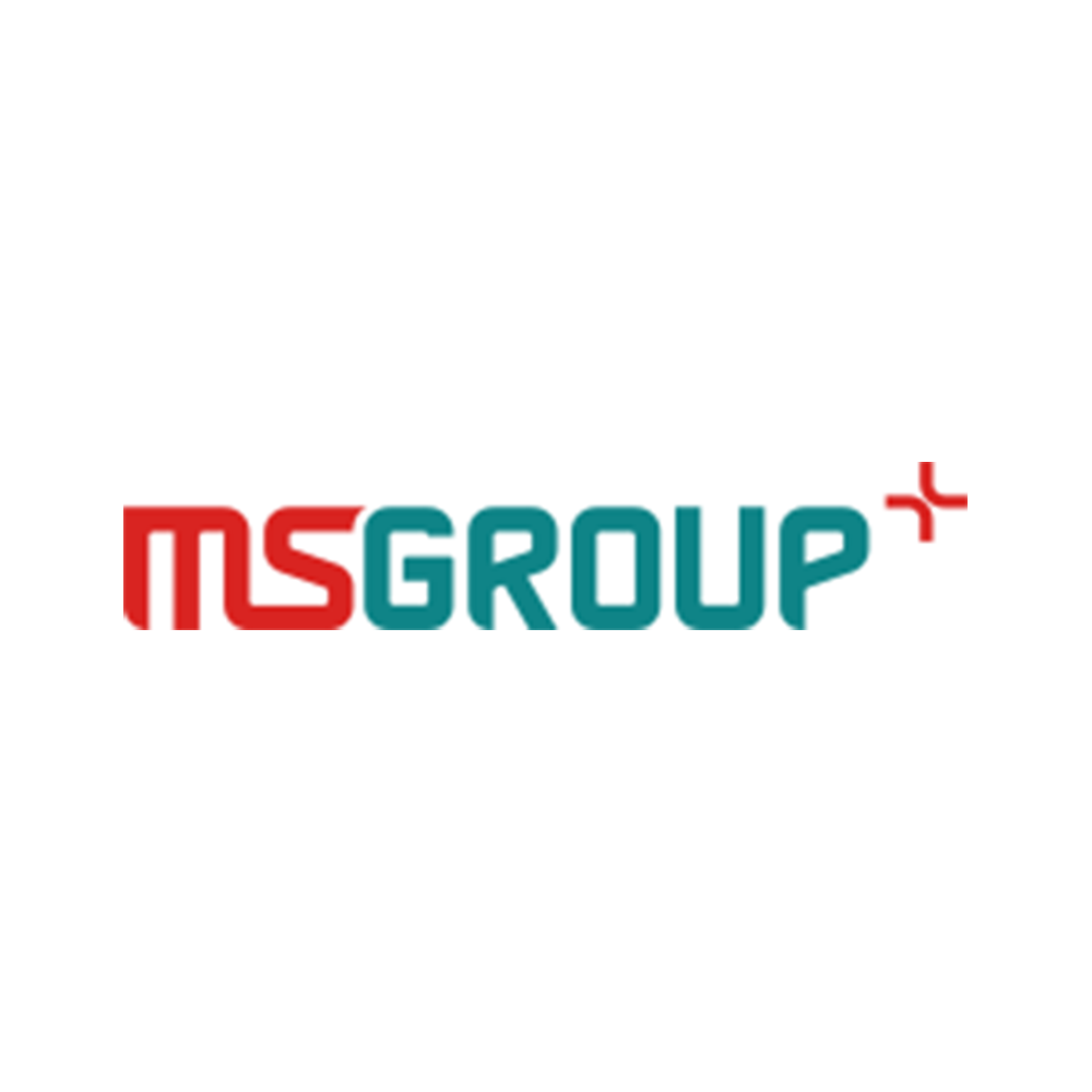 MS Groupe